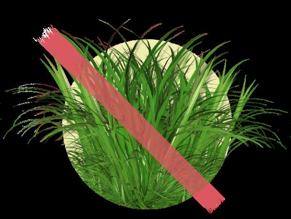 Заказать покос травы в Твери
